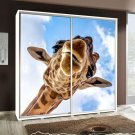 Wardrobe with graphics 205 - Animals