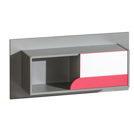 Hanging shelf with door